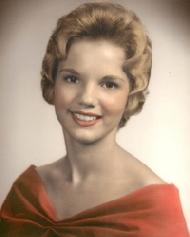 Paula David